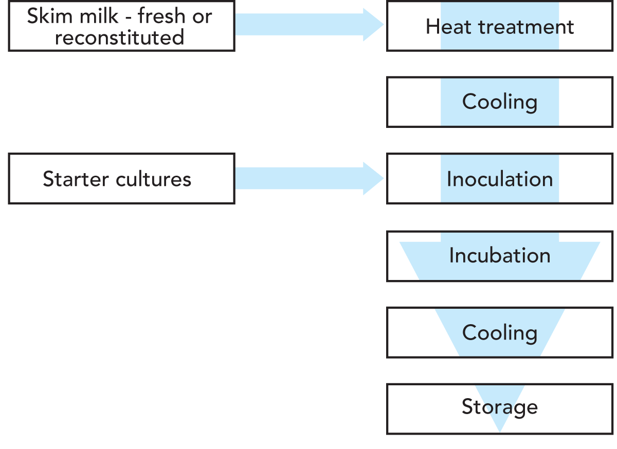 Cultures And Starter Manufacture