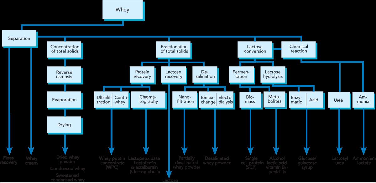 WHEY PROCESSING | Dairy Processing Handbook