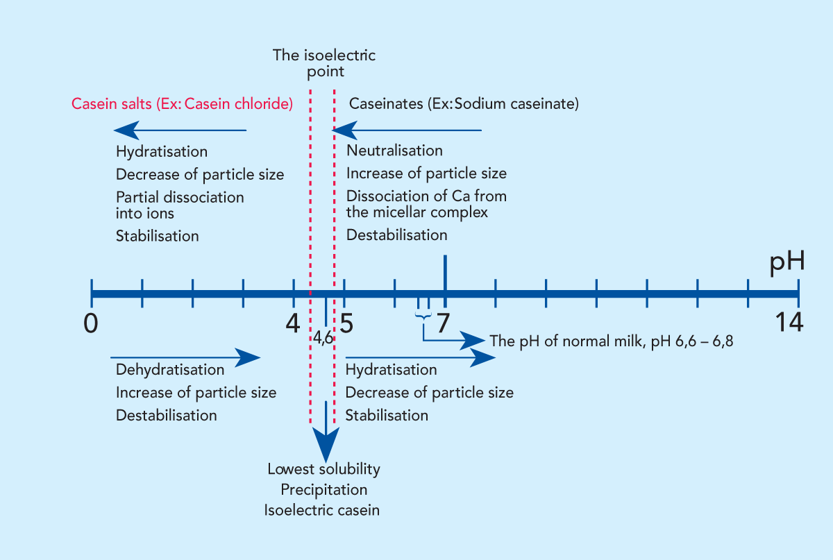 isoelectric ph of casein